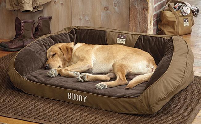 Dog Hammock Bed Uk