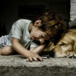 Addestrare un cane a non mordere un bambino