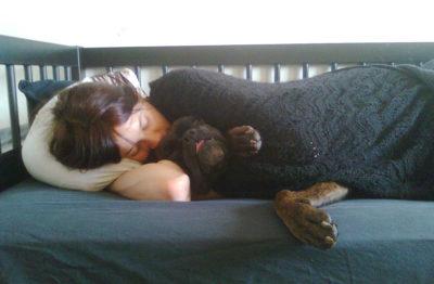 Il cane dorme con te? È sbagliato!