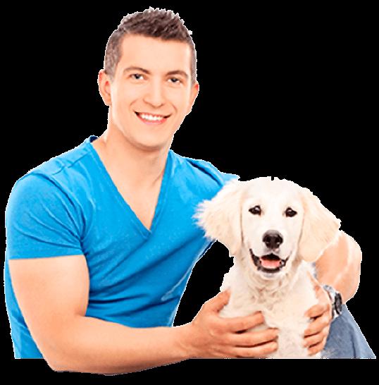 Lavorare con i cani, ecco le figure professionali e i lavori canini