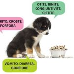 crocchette-anallergiche-cani