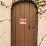 cartello attenti al cane
