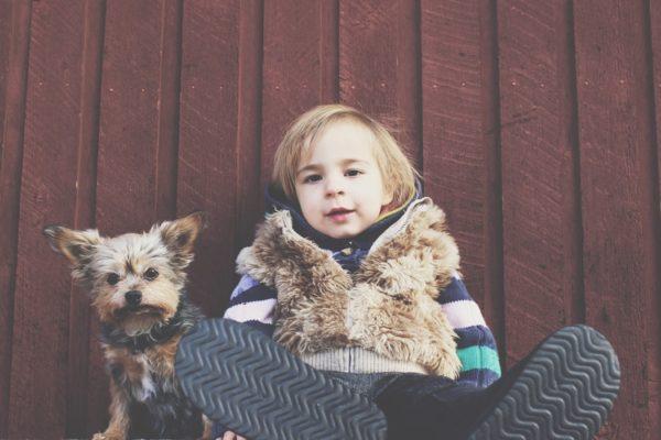 Cane salva bambino