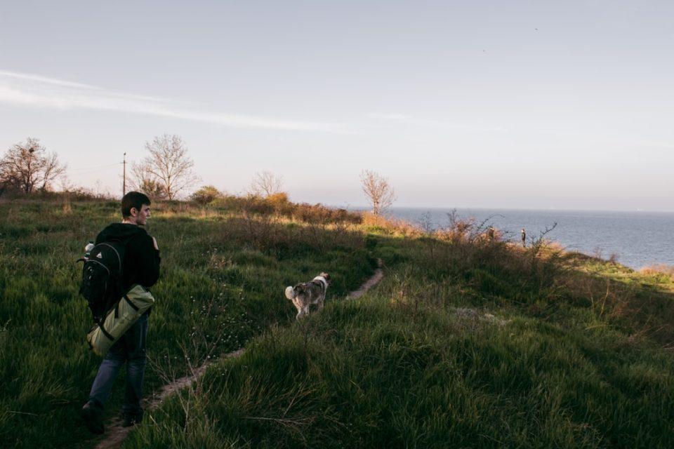 Spiagge per cani in Puglia