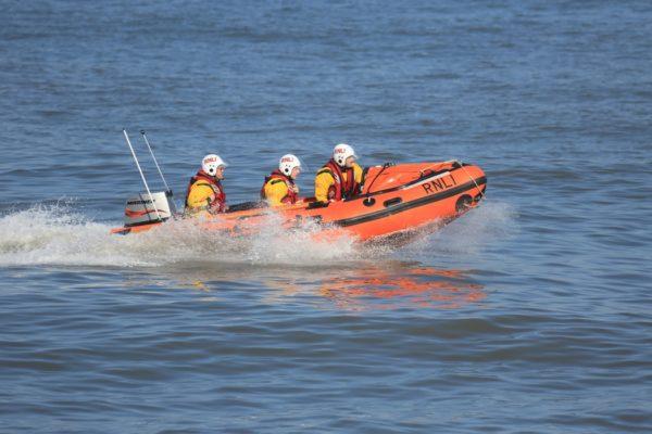 cani da salvataggio in mare