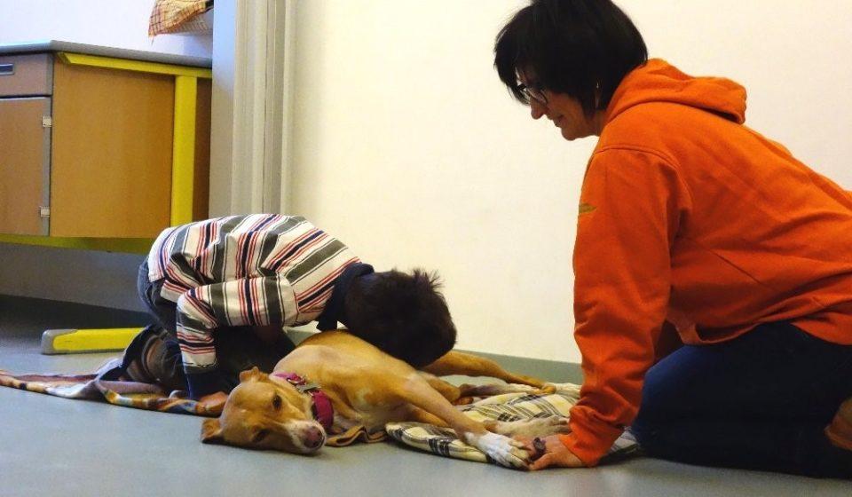 pet therapy e autismo