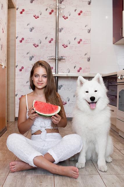 frutta ai cani