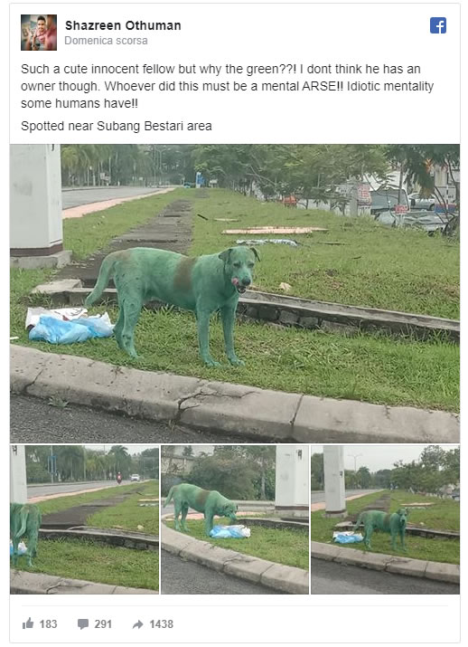 cane verniciato di verde