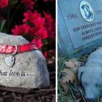Nasce a Torino, un cimitero per animali