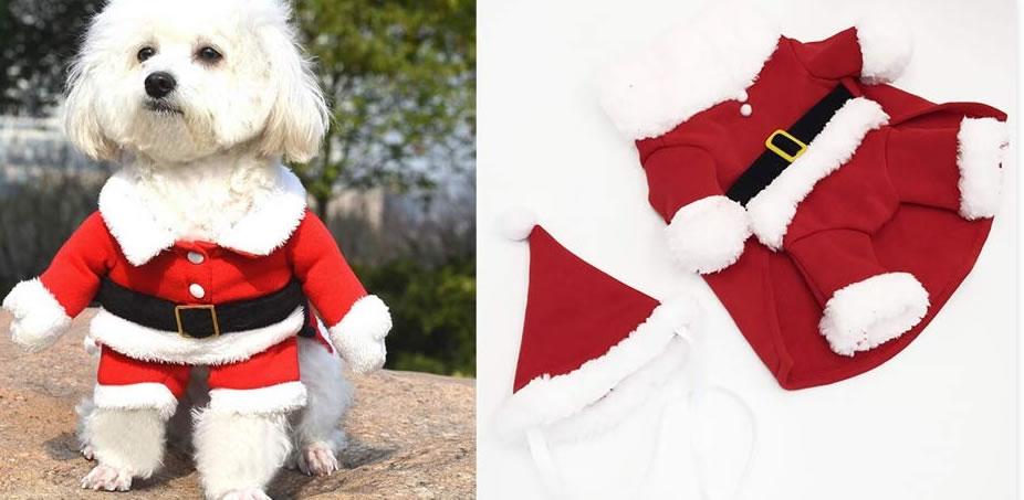 Costume natalizio per cane