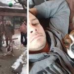 La storia di Bonita il pit bull adottato dopo 500 giorni in canile