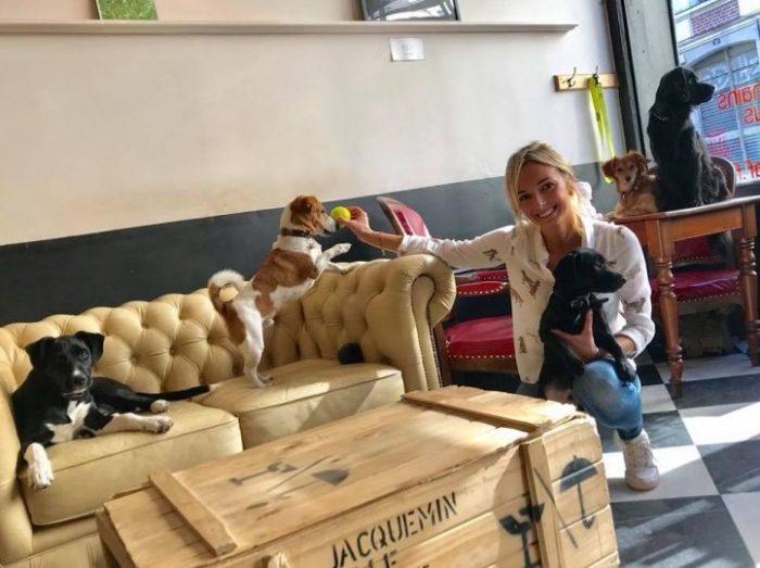 Caffetteria francesce accoglie cani abbandonati