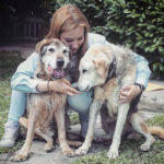 Debora Rizzo la volontaria che adotta solo cani anziani