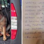 Lettera del pusher al cane antidroga scomparso