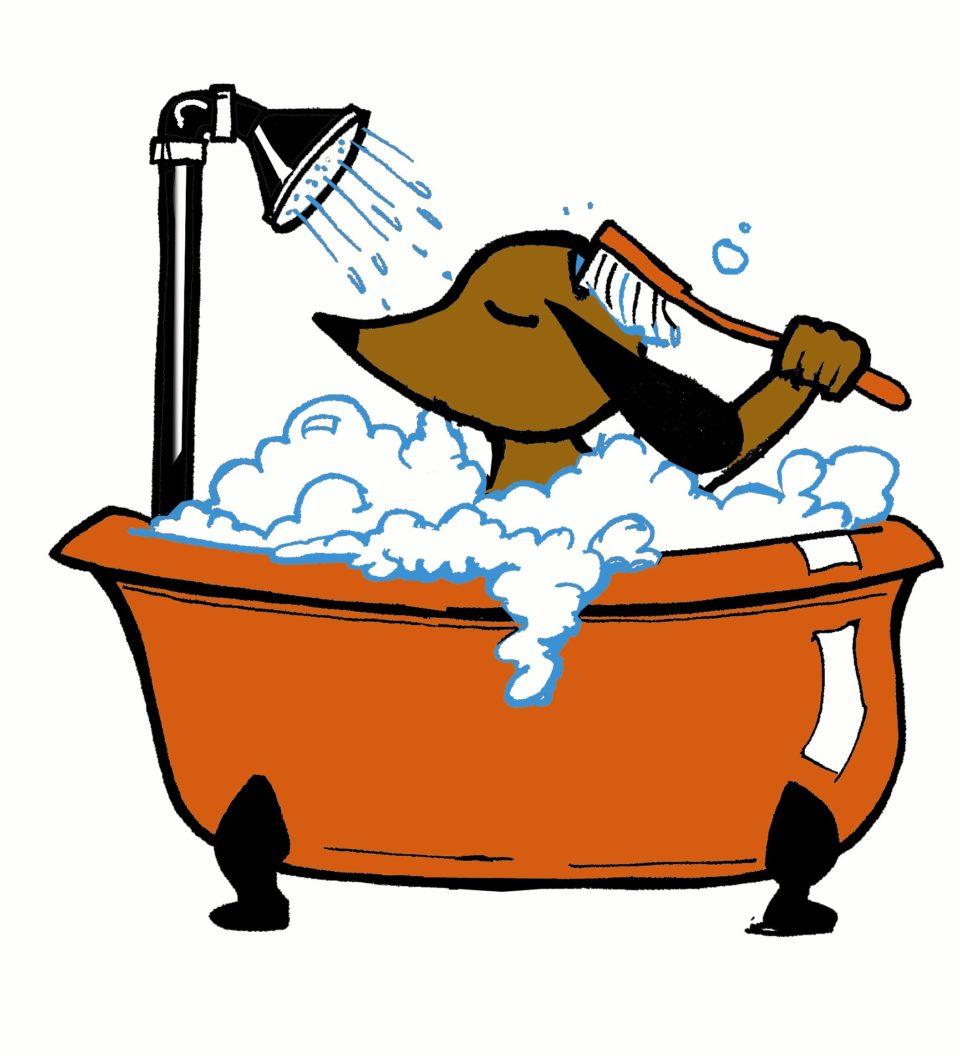 Ogni quanto lavare il cane