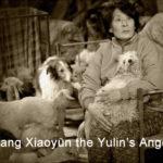 La Cina vieta consumo di carne di cane e gatto