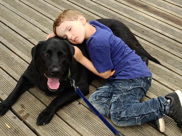 Pet Therapy cani bullismo