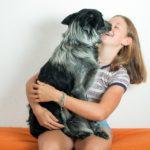 Cane, perchè è il migliore amico dell'uomo